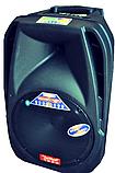 Temeisheng F18S с bluetooth 2 микрофона пульт аккумулятор, фото 4
