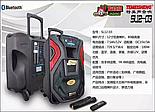 Комбоусилитель Temeisheng SL12-03, фото 4