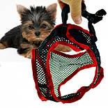 Комфортный поводок для собак Comfy Control Harness, фото 2