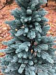 Искусственная Ель литая голубая 2.1м , фото 2