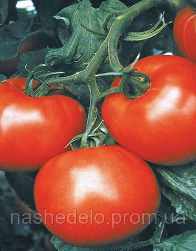 Семена томата Мобил 250 гр. Lark Seeds