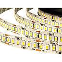 Светодиодная LED лента гибкая 12V PROlum™ IP20 3014\240 Standart, фото 3