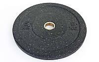 Блины (диски) проф. Бампер структурные с метал. втулкой отв. d-51мм RAGGY  5кг (резина)