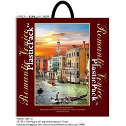 Полиэтиленовый пакет с петлевой ручкой ''Венеция'' 470*490, 10 шт