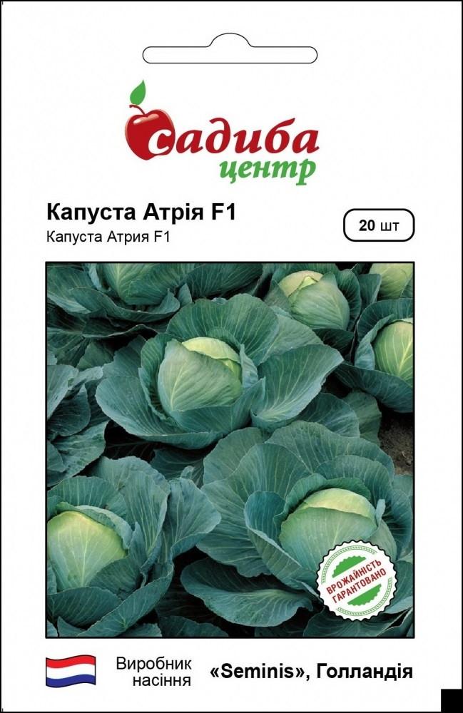 Семена капусты белокочанной Атрия F1 20 шт, Seminis