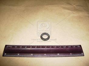 Кольцо упл. цилиндра торм. главного ВАЗ 2101-07 (2101-1602516) (пр-во БРТ) 2101-3502051-01Р
