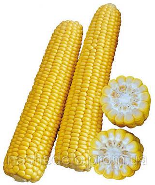 Семена кукурузы Раннее Наслаждение F1 2500 семян Lark Seeds