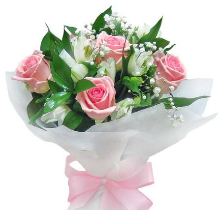 Свіжі красиві квіти троянди