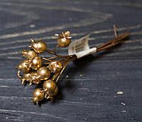 Шиповник золотой 12шт, фото 1