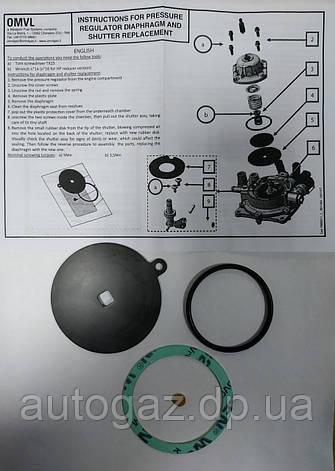 Ремкомплект OMVL CPR (шт), фото 2