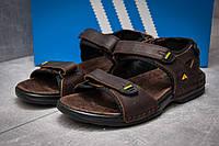 Сандалии мужские Adidas Summer, коричневые (13313),  [  43 (последняя пара)  ]