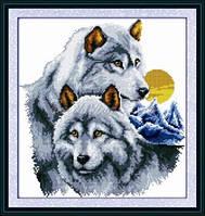 Волки пара Набор для вышивки крестом  канва 14ст
