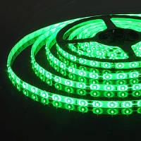 Светодиодная лента SMD 5050-60 led, зеленая, герметичная