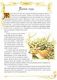 Казки про лицарів, фото 3