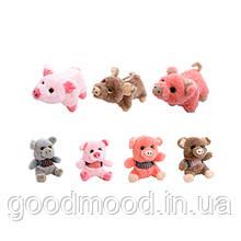 Малюк свинка 1