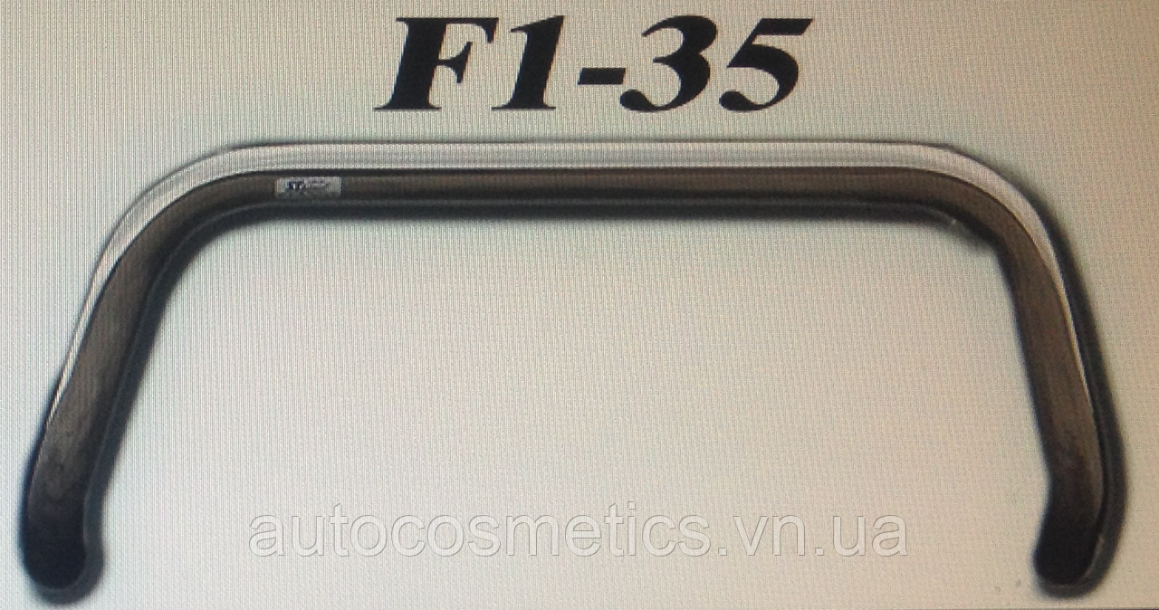 Кенгурятник F1-35.