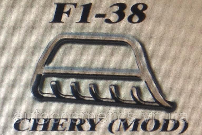 Кенгурятник F1-38.