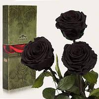 Набор из 3шт роз ЧЕРНЫЙ БРИЛЛИАНТ 7 карат Неувядающая долгосвежая живая роза FLORICH-