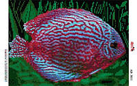 Алмазная вышивка «Рыбка». АВ-3011 (А3). Полная выкладка
