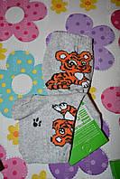 Дитячі шкарпетки,демисезон,розм.14
