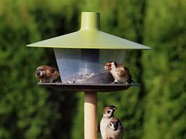 Кормушки и гнезда для диких птиц