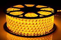 Лента светодиодная 2835-120-IP65-Y-12-220