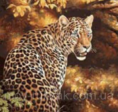 "Картина по номерам ""Леопард"" 40*50см"