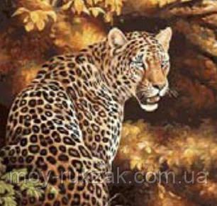 """Картина по номерам """"Леопард"""" 40*50см, фото 2"""