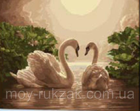 """Картина по номерам """"Лебеди"""" 40*50см"""