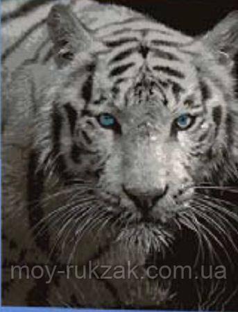 """Картина по номерам """"Тигр"""" 40*50см"""