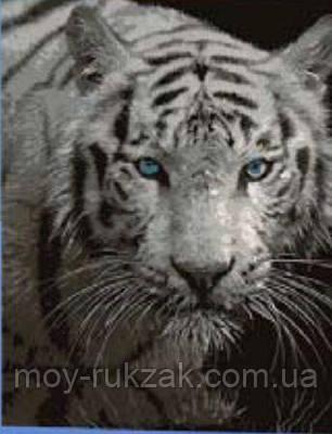 """Картина по номерам """"Тигр"""" 40*50см, фото 2"""