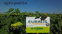 Семена подсолнуха ЕС Флоримис (под Евро-Лайтинг)