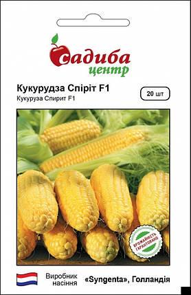 Семена кукурузы Спирит F1 20 шт, Syngenta, фото 2