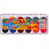 Акварель 12 цветов mini «Колорит тон» пластик 14×6 см