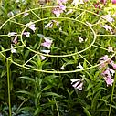 Опоры для растений 10 мм, фото 2