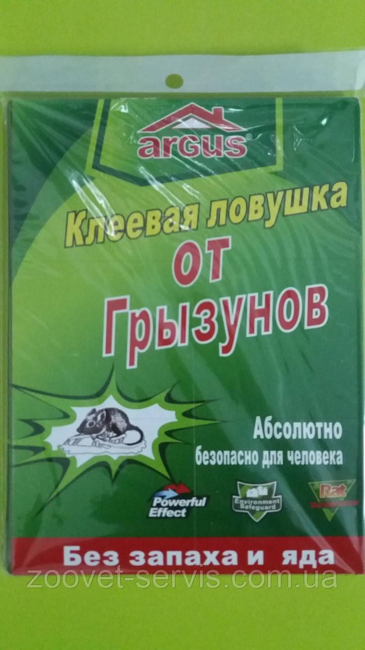 Клеевая ловушка(книжка) от крыс и мышей, таракановARGUS большаяразмер 21х32