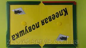 Клеевая ловушка(книжка) от крыс и мышей, таракановARGUS большаяразмер 21х32, фото 2