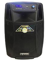 Аккумуляторная колонка с двумя микрофонами Temeisheng SL10-01 / 120W (USB/Bluetooth/Пульт ДУ) реплика