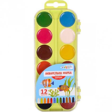 Акварель 12 цветов Craft and Joy пластик «Гамма» 17×7,5 см :  312046/Cr, фото 2