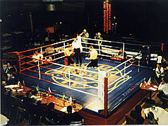 Боксерський ринг професійний поміст 5х5х0,6м. канати 4 х4 м.