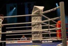 Подушка рингу кутова трикутна збільшена