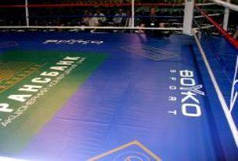 Покриття помосту рингу зі спеціальної тентової тканини