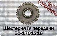 50-1701216  Шестерня IV передачи МТЗ-80 z=40