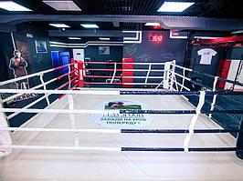Боксерський ринг підлоговий тренувальний, килим 6х6 канати 5х5