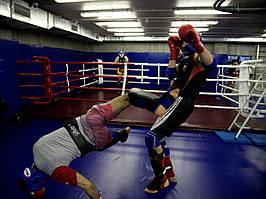Боксерський ринг підлоговий тренувальний, килим 5х5 канати 4х4