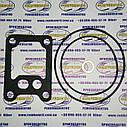 Ремкомплект центробежного масляного фильтра двигателя СМД 14-22, фото 2