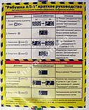 Инкубатор Рябушка (100 яиц) автоматический, фото 7