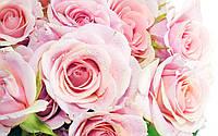 Доставка цветов и корзин с цветами