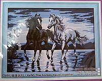 Пара лошадей Набор для вышивки крестом с печатью на ткани 14ст