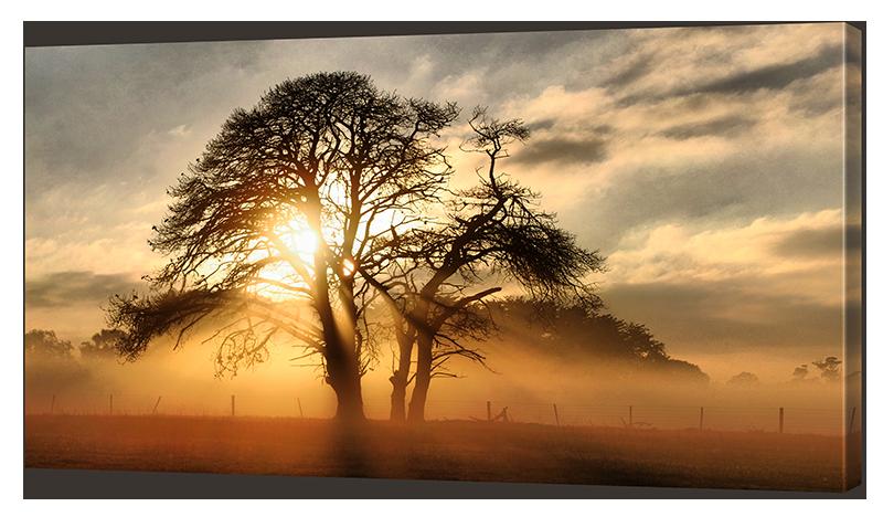 Картина Interno Эко кожа На закате 100х57см (A2042L)